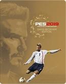 PS4 Pro Evolution Soccer 2019 -- David Beckham Edition (USK)